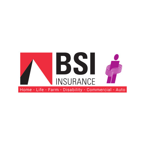 BSI Insurance Brokers Ltd.